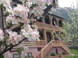 Max Hotel Gogi Alibegashvili, Kazbegi
