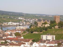 Ferienwohnung Germaniablick, Bingen am Rhein (Münster-Sarmsheim yakınında)