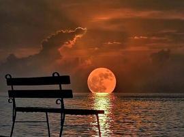 Moon Light Guest House