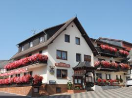 Landgasthof Hotel Sauer, Willingen (Eimelrod yakınında)