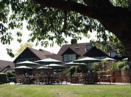 Barnham Broom Hotel, Golf & Spa, Гонингем (рядом с городом Mattishall)