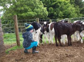 Manderley Park Farmstay B&B