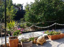 Asbn Magic Garden, Акко (рядом с городом Bustan HaGalil)