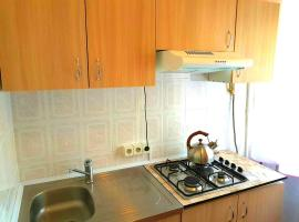 Apartment on Lesi Ukrainki 16