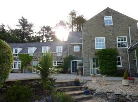 Yr Hen Felin - The Old Mill B&B