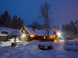 Viikingite küla, Saula