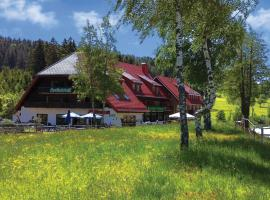 Pension Mühlencafé, Breitnau