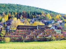 Hotel Valsana am Kurpark, Bad Wildbad