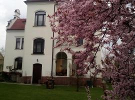 Villa Liduška, Bechyně (Nuzice yakınında)