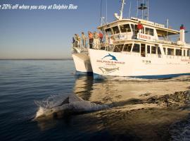 Dolphin Blue, Vincentia