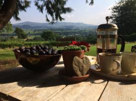 Maesyronnen Bed & Breakfast, Glasbury