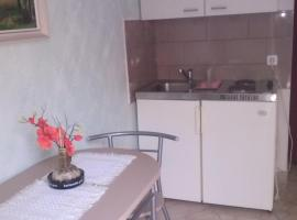 Apartments Vesna, Ribarica