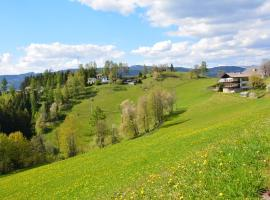 Gasthof Ochnerbauer, Kindberg (Stanz Im Murztal yakınında)