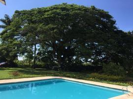Finca Pernambuco, La Tebaida (Caicedonia yakınında)