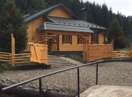 Lapushna Holiday Home, Holoshyna