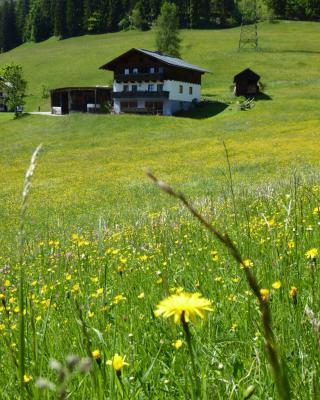 Arlberggut