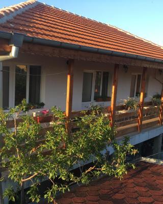 Guest House Pri Germanetsa