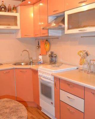 Apartment on Druzhby