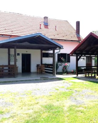 Guest accommodation Plavo oko