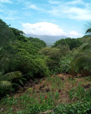 Eco-Lodge El Porvenir.