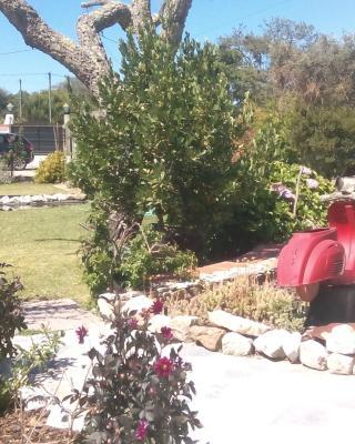 Quinta da Yuca