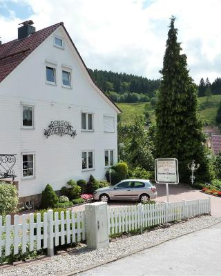 Pension Rheingold Garni