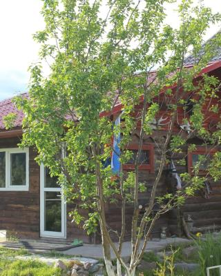 Guest House Petrovich
