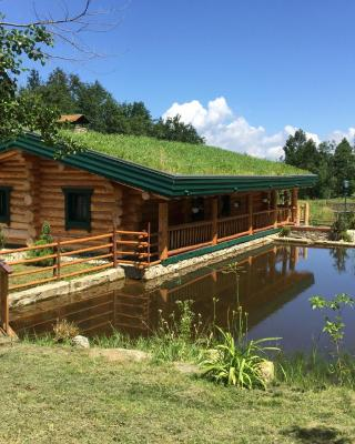 Eco House Butinar