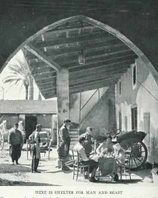 Altun Tabya Vintage