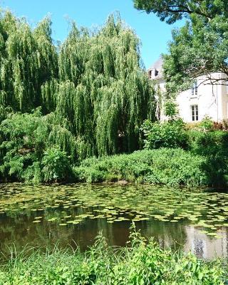 Moulin d'Amour