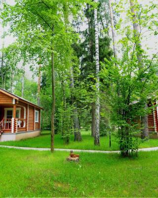 Sanatory Vyatichi