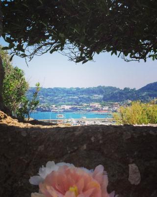 Harbour View B&B