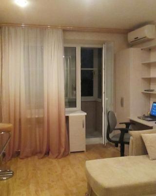 Apartment on Ploshchad Blukhera