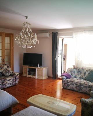 Irena Family House