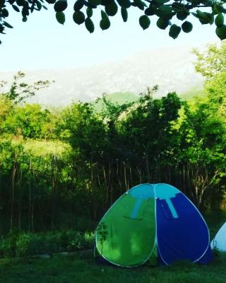 ARK Armenia Kapan Eco-Camp
