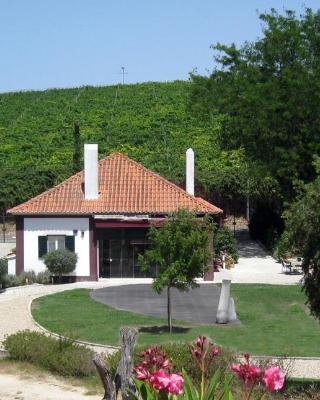 Quinta do Painel
