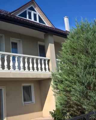 Apartment on Gagarina street