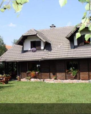 Guest House Alpska Vila