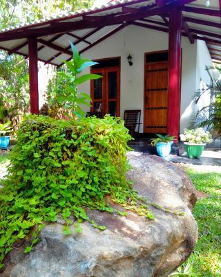 Bright Sun Safari Hotel