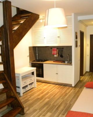Apartment Busteni