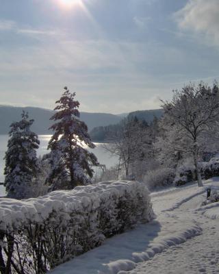 VVF Villages « Le Fjord Jurassien » Maisod le lac