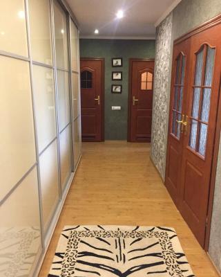 Apartment on Dzierzhinskogho 12