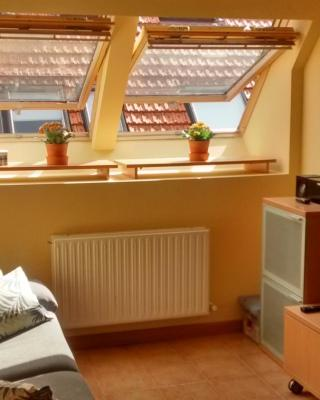 Apartamento cómodo y luminoso en Isaba