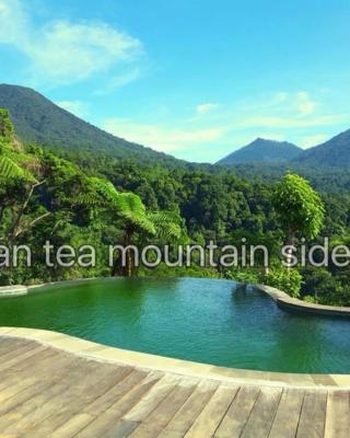 D'wan Tea Mountain Side