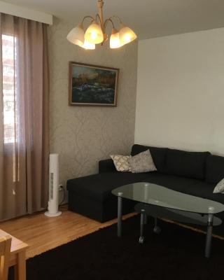 Valtakatu Apartment