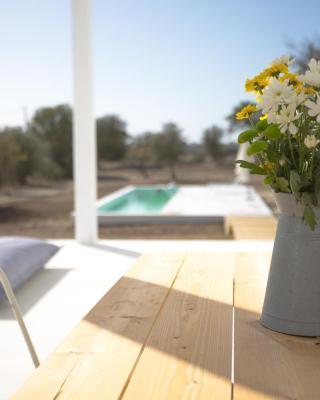casa singular | concept house