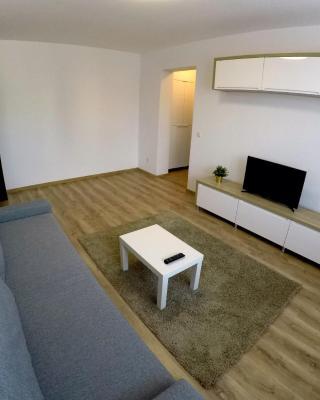 Apartament Victoriei