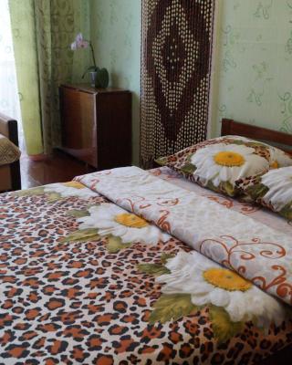 Apartment L'va Tolstogo 52