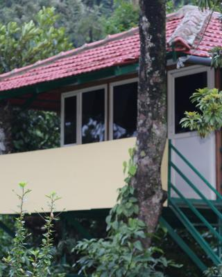 Blossom Home Stay