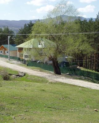 Vila Doina Ecotour